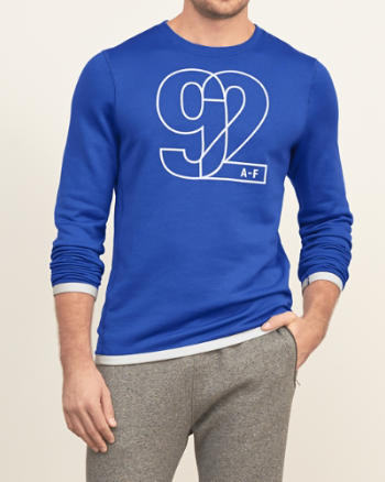 Mens Logo Graphic Athletic Sweatshirt