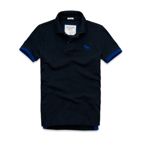 Ampersand Mountain Polo