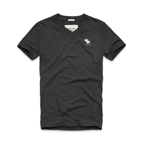 Mens Boreas Mountain Tee