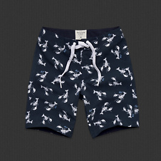 Mens Lookout Mountain Swim Shorts