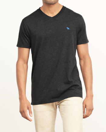 Mens Classic Fit V-Neck Tee