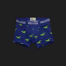 Boys Pelican Point Boxer Briefs