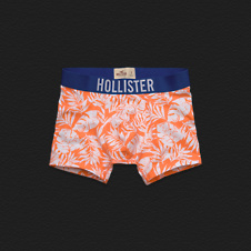 Boys La Jolla Cove Boxer Briefs