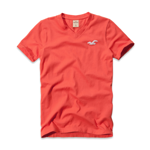 Guys Avalon Place V Neck T-Shirt
