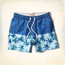 San Onofre Swim Shorts