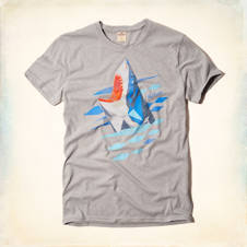 Shark Graphic T-Shirt