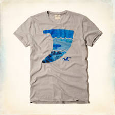 Vintage Surfboard Fin Graphic T-Shirt