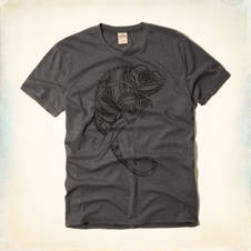 Chameleon Graphic T-Shirt