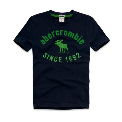 graphic tees (off during sale) newcomb lake tee