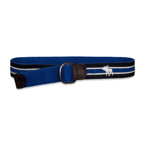 accessories reversible preppy striped belt