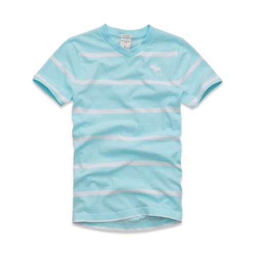 guys striped vneck tee