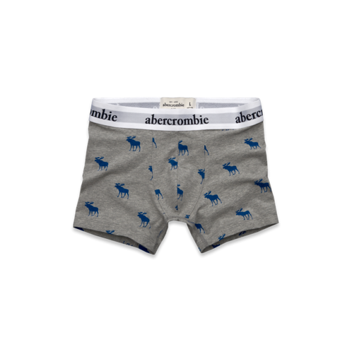 guys blue mountain boxer briefs