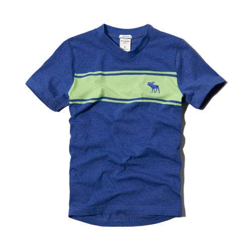 boys bold stripe v-neck tee