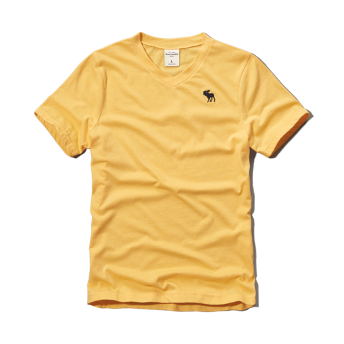 guys icon v-neck tee