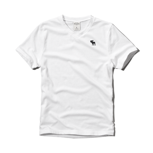 boys icon v-neck tee