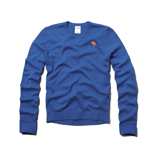 boys classic v-neck sweater