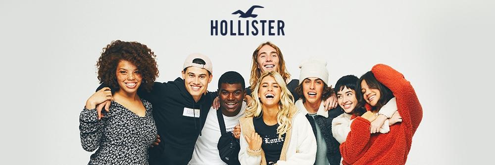 hollister associate login