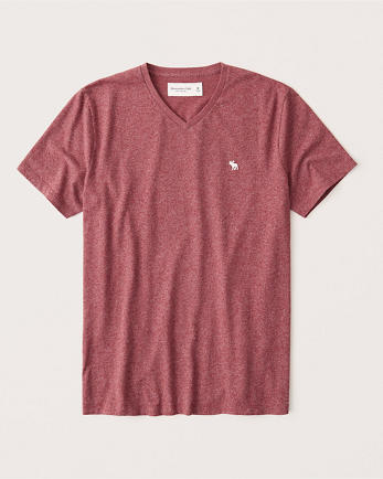ANFShort-Sleeve Icon V-Neck Tee