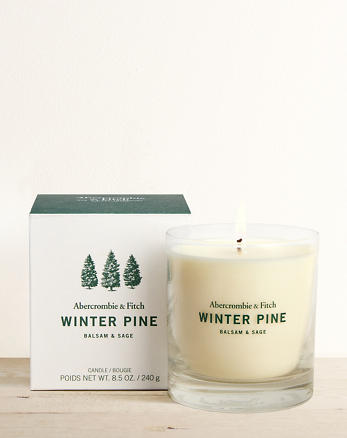 Winter Pine Candle 8 5 Oz
