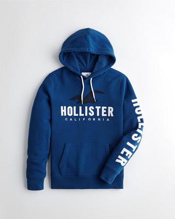 hoodie hollister homme
