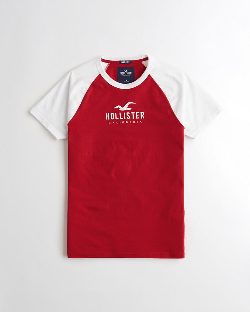 018cf524c Guys Muscle Fit Colorblock Graphic Tee | Guys Sale | HollisterCo.com