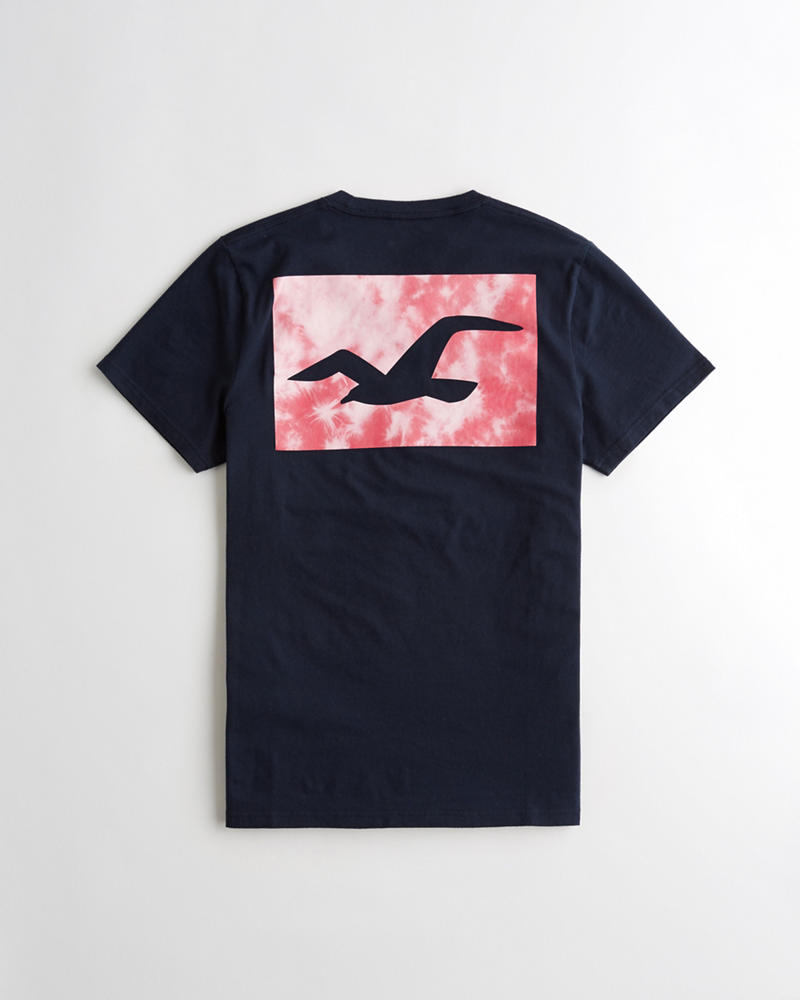 Guys Print Logo Graphic Tee Guys Online Exclusives Hollisterco