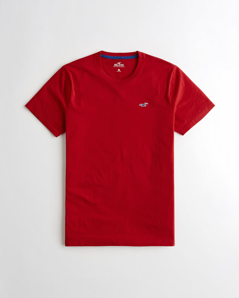 Guys Crewneck T-Shirt | Guys Tops | HollisterCo com