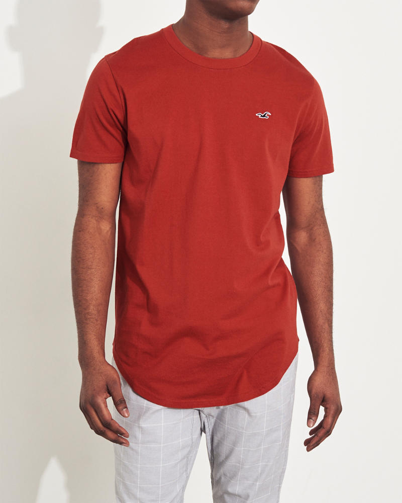 578dba40 Guys Curved Hem T-Shirt | Guys Tops | HollisterCo.com