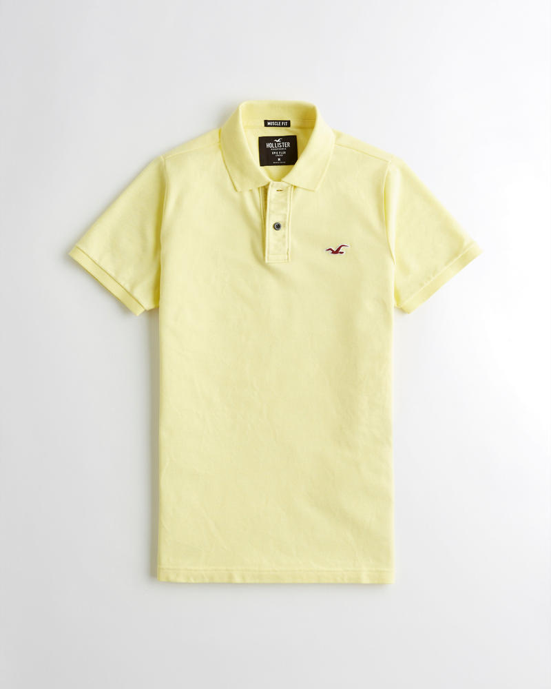 6450a619 Guys Stretch Muscle Fit Polo | Guys Tops | HollisterCo.com