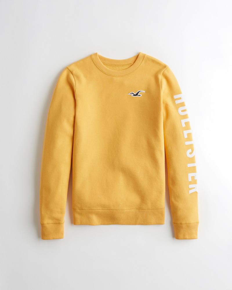 Girls Logo Graphic Crewneck Sweatshirt | Girls Tops | HollisterCo.ca