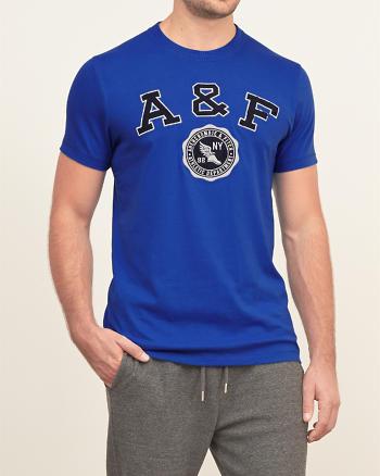 ANF Applique Logo Graphic Tee