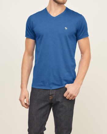 Mens Muscle Fit V-Neck Tee