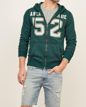 Mens Embroidered Logo Graphic Hoodie