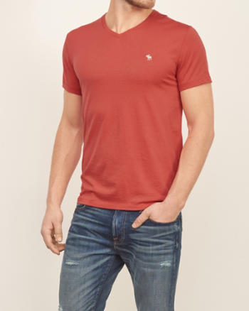 Mens Iconic V Neck Tee