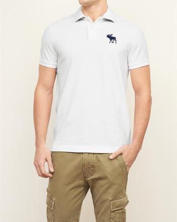 ANF Big Icon Polo