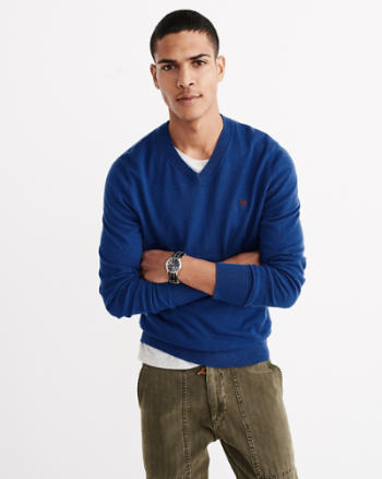 Mens Icon V-Neck Sweater