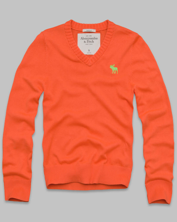 ANF Lake Placid Sweater