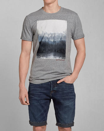 ANF Painted Mountain Graphic Tee