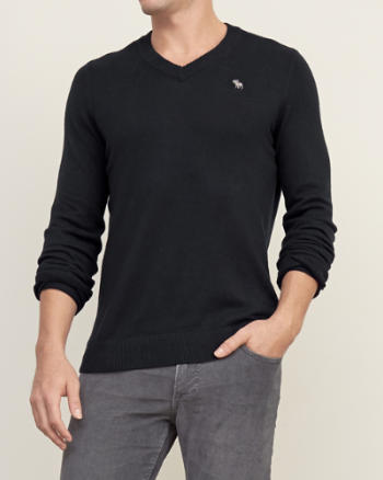Mens Iconic V-neck Sweater