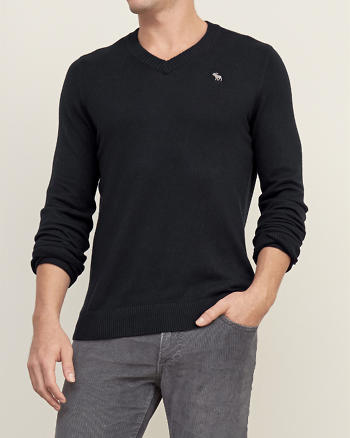 ANF Iconic V-neck Sweater