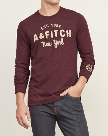 ANF Applique Graphic Long Sleeve Tee