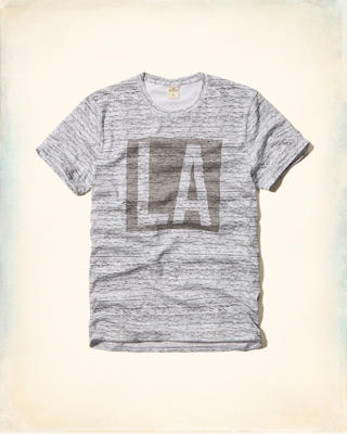 Textured Hollister Graphic Tee