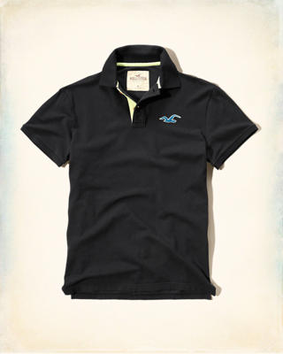 Two-Tone Icon Polo
