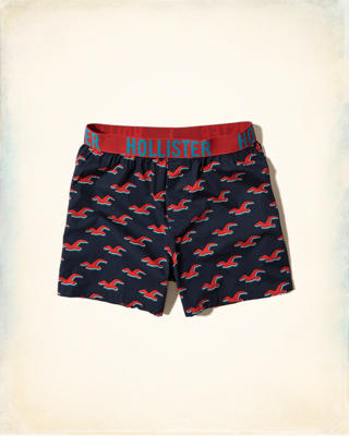 Hollister Woven Boxers