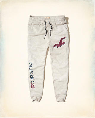 Hollister Logo Graphic Fleece Jogger Pants