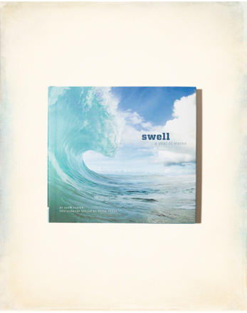 hol Chronicle Books Swell: A Year of Waves
