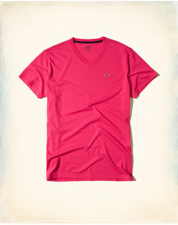 hol Must-Have V-Neck T-Shirt