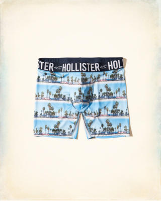 Hollister Photoreal Longer-Length Trunk