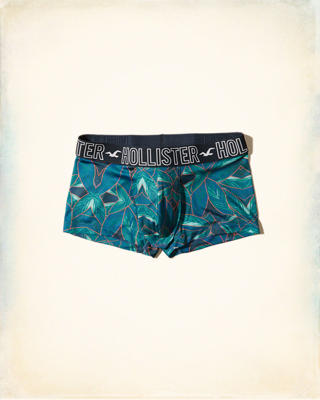 Hollister Photoreal Low-Rise Trunk