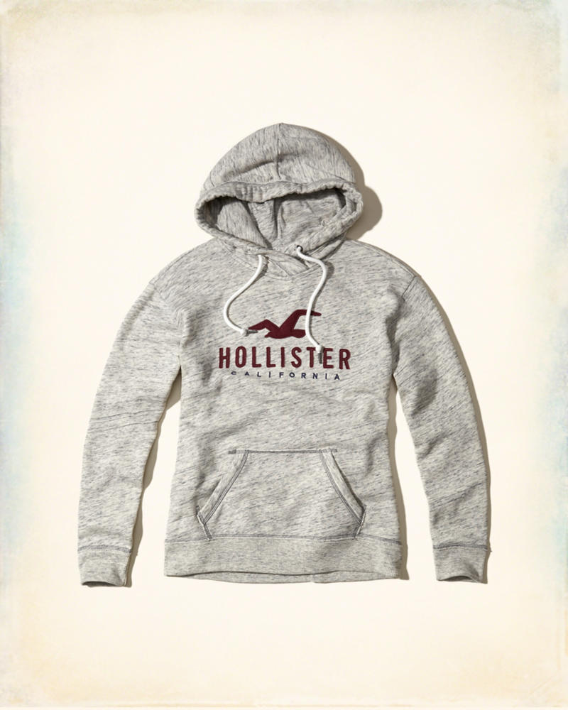Girls Logo Graphic Hoodie | Girls Sale | HollisterCo.com